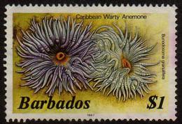 Barbados - #656d - Used - Barbados (1966-...)