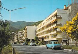 66 - AMELIE LES BAINS - Grand Hôtel De La Reine Amélie. (voiture Peugeot 204 + SIMCA 1100) - Autres Communes