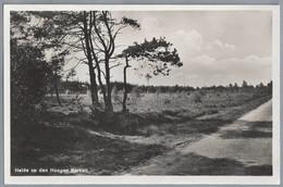 NL.- HEIDE OP DE HOOGEN BERKELT. 1933. - Paesi Bassi