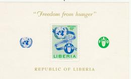 FOGLIETTO NUOVO LIBERIA (ZX1607 - Liberia