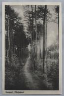 NL.- NUNSPEET. EIBERTJES[PAD. 1946. - Nunspeet