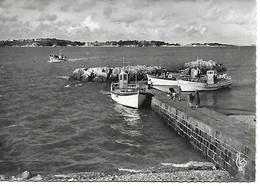 22 - PAIMPOL  - POINTE DE L'ARCOUEST -  VEDETTE VEGA - EMBARCADERE POUR L'ILE DE BREHAT - 1950  - TRES  BON  ETAT - Paimpol