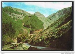 MADEIRA - PAISAGEM ENTRE FUNCHAL E O CURRAL DAS FREIRAS - PORTUGAL  ( 2 Scans) - Madeira