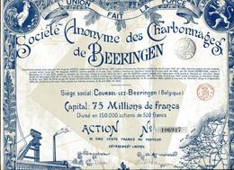 CHARBONNAGES De BEERINGEN; Action - Mines