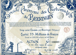 CHARBONNAGES De BEERINGEN; Action - Mijnen