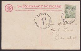 NZ 1/2d MT COOK DOUBLE DEFICIENCY LOCAL POSTCARD - Briefe U. Dokumente