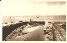 CARNAC  -- Entrée Du Port                                               -- Guy H 612 - Carnac