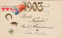 1903 New Year Date, Good Luck Symbols Mushroom Pig Horseshoe, C1900s Vintage Embossed Postcard - New Year