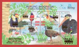 Indonesia 2009, MS Birds Of Indonesia. The Treasure Of Sumatra Rainforest.  MNH - Otros