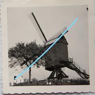Photo LOMBEEK Onze Lieve Vrouw MOLEN 1958 Moulin - Luoghi