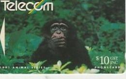 PAN TROGLODYLE CHIMPANZE   1991   NZ - Nuova Zelanda