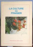 La Culture Du Fraisier - Giardinaggio