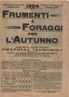 Catalogue 1904 Ingegnoli Frat. Frumenti E Foraggi - Giardinaggio