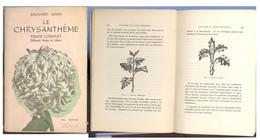 Culture Du Chrysanthème   Marchienne Au Pont - Health