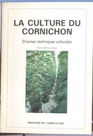 La Culture Du Cornichon - Garden