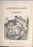La Culture De La Laitue - Giardinaggio