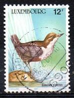 LUXEMBOURG. N°1120 Oblitéré De 1987. Cincle Plongeur. - Songbirds & Tree Dwellers