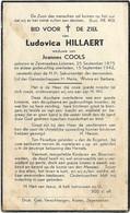 Doodsprentje  *  Hillaert Ludovica  (° Zeveneeken-Lokeren 1875  / +  1942) X  Cools Joannes - Religion & Esotérisme