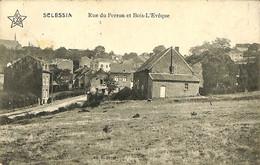 031 457 - CPA - Belgique - Sclessin - Rue Du Perron Et Bois-l'Evêque - Liege