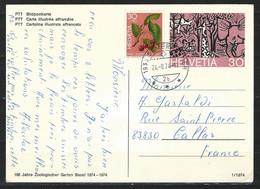 NZ-/-038C- BEL  ENTIER OBL De 1974 ,  Avec COMPLEMENT Pour La FRANCE -  VOIR LES IMAGES, TTB - Ganzsachen