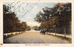 CPA ROUMANIE BUZEU BULEVARDUL I.C.BRATIANU - Roumanie