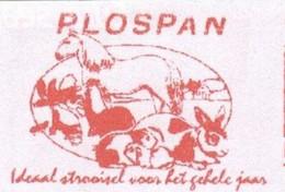 EMA METER STAMP FREISTEMPEL HORSE RABBIT Guinea Pig Cavallo Coniglio Hase Pets Lapin Cheval - Farm