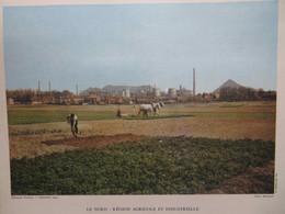 GRANDE PHOTO : PAYSAGE DU NORD ET DU PAS-DE-CALAIS : LES MINES, L'GRICULTURE- 1954- - Picardie - Nord-Pas-de-Calais