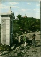 CORNUDA ( TREVISO ) VIA SANTUARIO DELLA ROCCA - EDIZIONE ANDREATTA - SPEDITA 1962  (BG6031) - Treviso