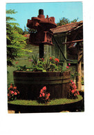 Cpm - [01] Ain > Divonne Les Bains - Pressoir Pittoresque - N.2922 CELLARD - 1980 - Divonne Les Bains