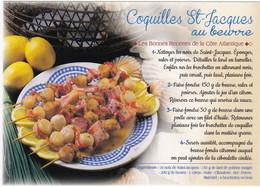 COQUILLES  ST-JACQUES AU BEURRE  : Edit:  JACK N °  569  Les Bonnes Recettes De La Côte Atlantique   (neuve) - Ricette Di Cucina