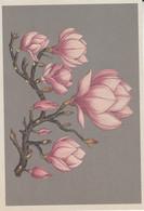 Postcard - Botanicum - Ornamental Shrubs - Chinese Or Saucer Magnolia - New - Cartoline