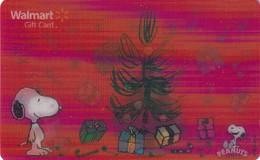 USA - Snoopy, Walmart Magnetic 3D Gift Card, Unused - Comics