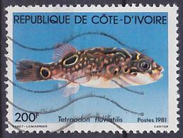 Timbre Oblitéré N° 568(Yvert) Côte D'Ivoire 1981 - Poisson - Costa D'Avorio (1960-...)