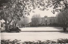 *** 84  ***  BEDOIN  école De Filles - Neuve TTB - Otros Municipios