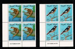 MAROC  Loutre Et Oiseau 2 Bloc De 4 Coin Daté Coins Datés OCTOBRE 1979    ** MNH  Gomme Intacte TTB - Marocco (1956-...)