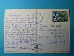 Nouvelle Calédonie - 2011 - Tricot Rayé Sur CPM - Oblitération TAD Magenta / Nvelle Calédonie De 2012 - Briefe U. Dokumente