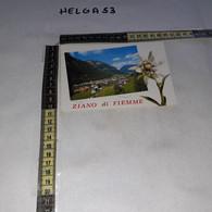 C12333 ZIANO DI FIEMME PANORAMA - Italia