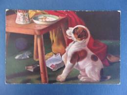 PETIT CHIEN MARKE EGEMES SERIE 88 - Künstlerkarten