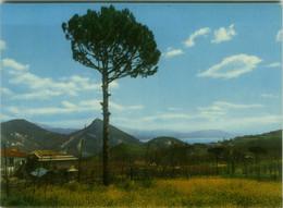 CAVA DEI TIRRENI ( SALERNO ) S. LIBERATORE - EDIZIONE FRATELLI LEOPOLDO - 1960s (BG6059) - Cava De' Tirreni