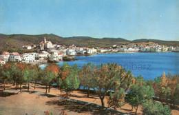 Cadaques , Años 50, Años 60,  Costa Brava , Mediterráneo, Arbol - Gerona