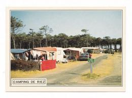 Sion - Saint-Hilaire (-de-Riez), Le Camping De Riez, éd. Dubray, Cliché J.-J. Dubray, N° 1323/85 Automobiles, Caravanes - Saint Hilaire De Riez