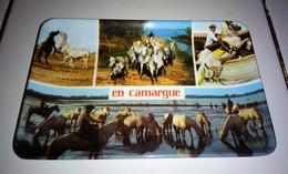 CENDRIER. VIDE POCHE EN MELAMINE . La Camargue, ( Avec Chevaux ) 14 Cm X 9,5 Cm - Altri
