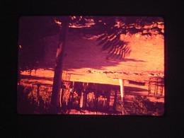 1 Slide - MC26 - Diverse Themes Cityscape Landscape Nature People Family Cars Flowers Art Animals - Dias