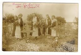 OISE  /  BEAUVAIS  /  CIMETIÈRE  MILITAIRE ( Infirmières CROIX-ROUGE, Dont Mme J. PIERRART, 27 Mai 1919 ) /  CARTE-PHOTO - Beauvais