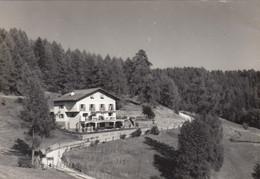 ALTREI-ALTERIVO-BOZEN-BOLZANO- PENSIONE=AI LARICI-LARCHENHEIM=CARTOLINA VERA FOTOGRAFIA- VIAGGIATA IL 28-7-1965 - Bolzano (Bozen)