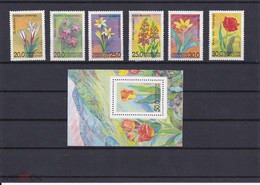 1993. Uzbekistan. Flowers. (Mi. 35-41) MNH - Uzbekistan