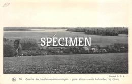 30 Grootte Der Landbouwondernemingen Grote Alleenstaande Hofsteden - Ciney - Ciney