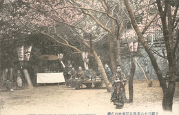 Japan - Shimonoseki - SCherry Blossoms Of Akama Shrine - 1915 - Japan