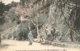 Japan - Shimonoseki - Cherry Blossoms Of Koyodani  - 1915 - Japan