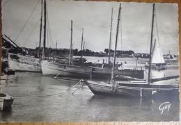 56 Morbihan CPSM La Trinité Sur Mer Le Port 1949 - La Trinite Sur Mer